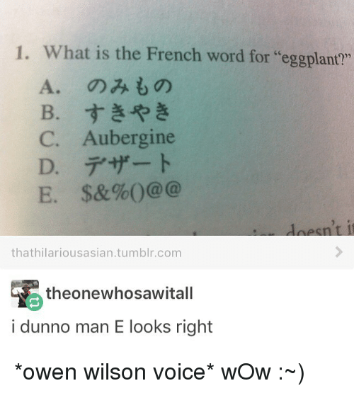 """eggplant: 1. What is the French word for """"eggplant""""  C. Aubergine  E. $&%0@@@  that hilariousasian.tumblr.com  theone whosawitall  i dunno man E looks right *owen wilson voice* wOw :~)"""