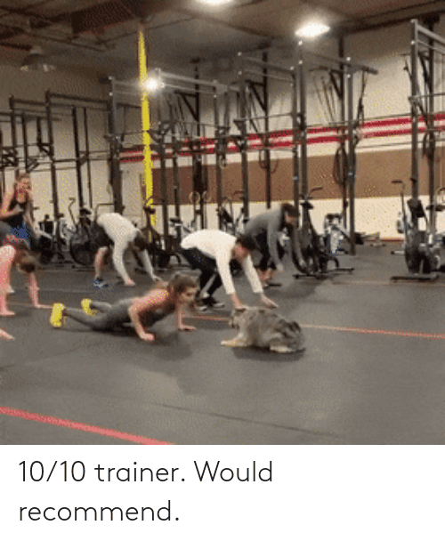 trainer: 10/10 trainer. Would recommend.