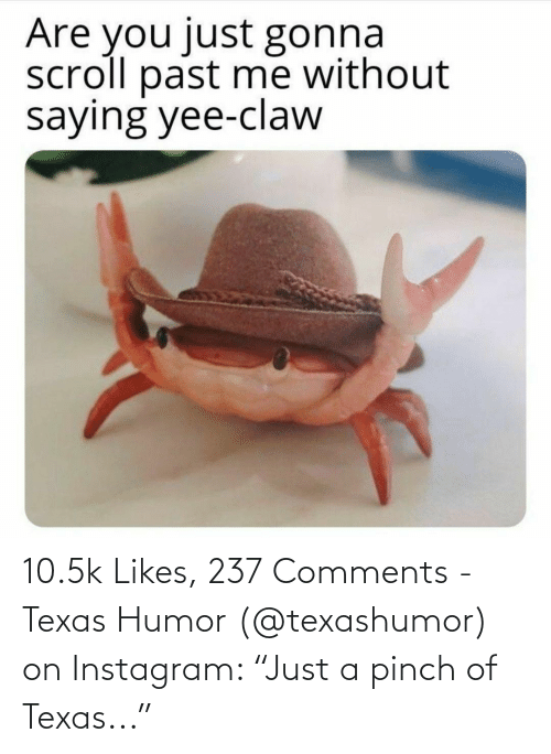 """humor: 10.5k Likes, 237 Comments - Texas Humor (@texashumor) on Instagram: """"Just a pinch of Texas..."""""""