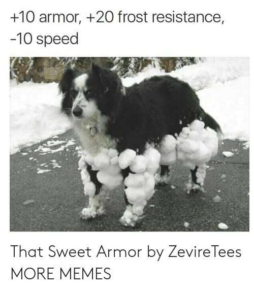 resistance: +10 armor, +2O frost resistance,  -10 speed That Sweet Armor by ZevireTees MORE MEMES