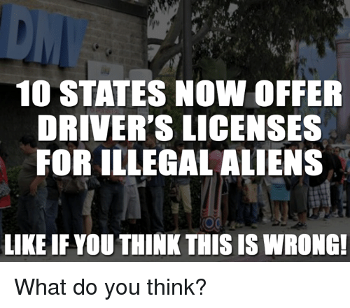 Illegal Alien: 10 STATES NOW OFFER  DRIVER'S LICENSES  FOR ILLEGAL ALIENS  LIKE IF YOU THINKTHIS IS WRONG! What do you think?