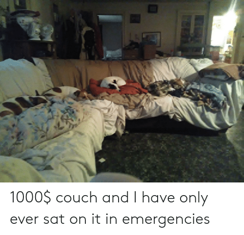 Couch, Sat, and Ever: 1000$ couch and I have only ever sat on it in emergencies