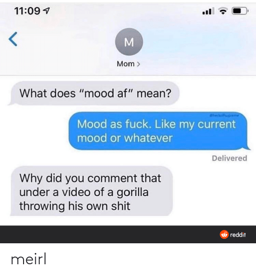 "gorilla: 11:09 1  Mom >  What does ""mood af"" mean?  Sheckalfhuprem  Mood as fuck. Like my current  mood or whatever  Delivered  Why did you comment that  under a video of a gorilla  throwing his own shit  6 reddit meirl"