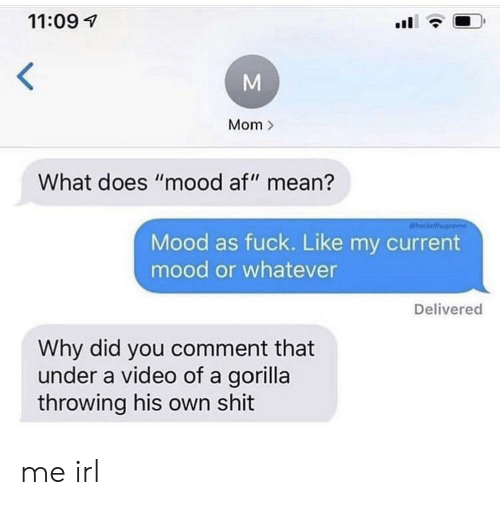 "Af, Mood, and Shit: 11:09  Mom  What does ""mood af"" mean?  heckaffup  Mood as fuck. Like my current  mood or whatever  Delivered  Why did you comment that  under a video of a gorilla  throwing his own shit  M me irl"