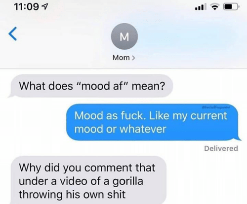 "Af, Mood, and Shit: 11:09  Mom  What does ""mood af"" mean?  heckofup  Mood as fuck. Like my current  mood or whatever  Delivered  Why did you comment that  under a video of a gorilla  throwing his own shit  M"