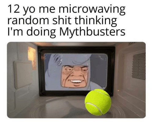 MythBusters: 12 yo me microwaving  random shit thinking  I'm doing Mythbusters