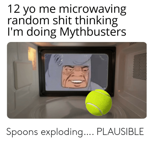 MythBusters: 12 yo me microwaving  random shit thinking  I'm doing Mythbusters  ww Spoons exploding…. PLAUSIBLE