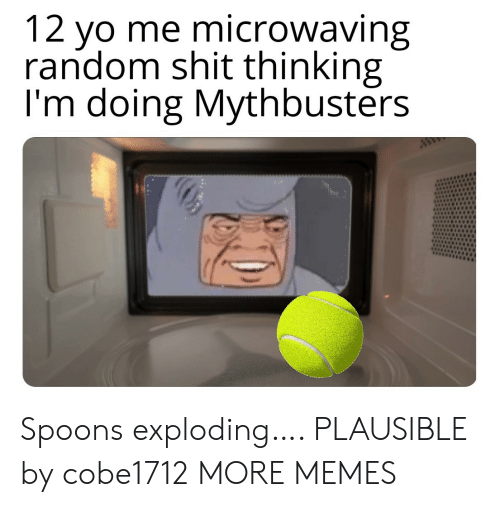 MythBusters: 12 yo me microwaving  random shit thinking  I'm doing Mythbusters  ww Spoons exploding…. PLAUSIBLE by cobe1712 MORE MEMES