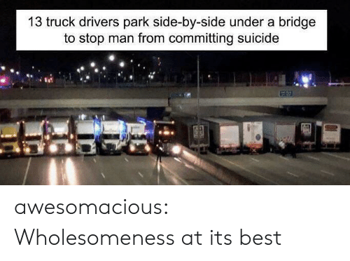 Tumblr, Best, and Blog: 13 truck drivers park side-by-side under a bridge  to stop man from committing suicide awesomacious:  Wholesomeness at its best