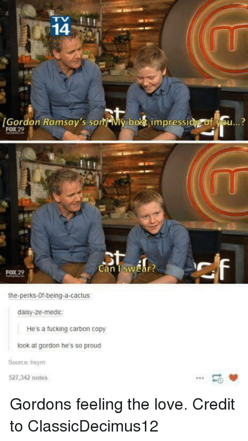 Medic: 14  [Gordon Ramsay's som-My be  impressi  f se..?  FOX 29  Can TswEar  FOX 29  the-perks-Of-being-a-cactus  daisy-ze-medic:  He's a tucking carbon copy  look at gordon he's so proud  Source: hsym  527,342 notes  -0 Gordons feeling the love. Credit to ClassicDecimus12