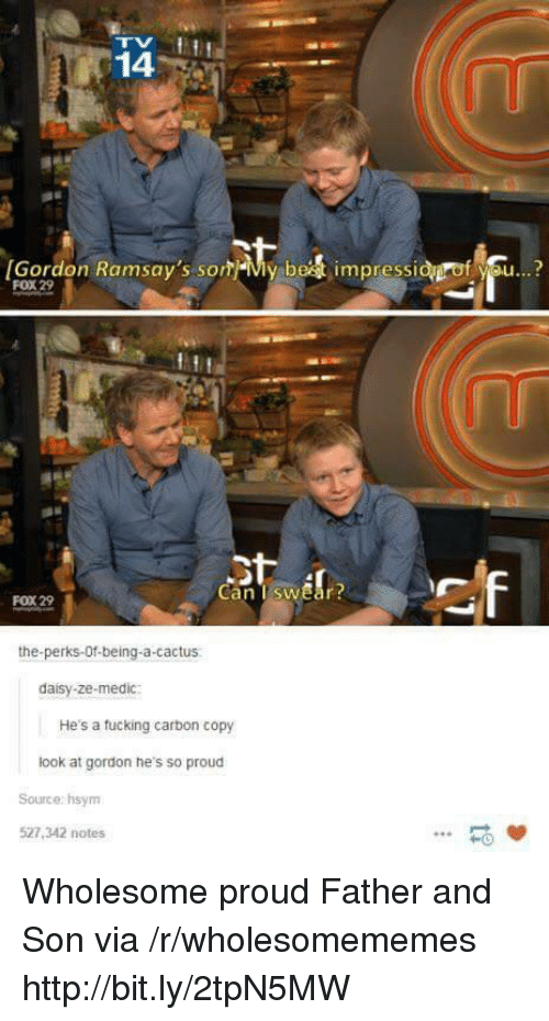 Medic: 14  [Gordon Ramsay's som-My be  impressi  f se..?  FOX 29  Can TswEar  FOX 29  the-perks-Of-being-a-cactus  daisy-ze-medic:  He's a tucking carbon copy  look at gordon he's so proud  Source: hsym  527,342 notes  -0 Wholesome proud Father and Son via /r/wholesomememes http://bit.ly/2tpN5MW