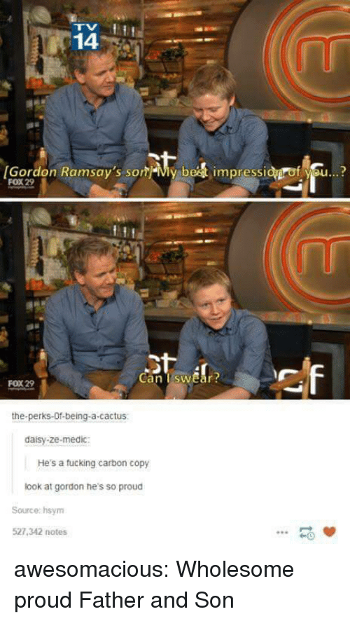 Medic: 14  [Gordon Ramsay's som-My be  impressi  f se..?  FOX 29  Can TswEar  FOX 29  the-perks-Of-being-a-cactus  daisy-ze-medic:  He's a tucking carbon copy  look at gordon he's so proud  Source: hsym  527,342 notes  -0 awesomacious:  Wholesome proud Father and Son