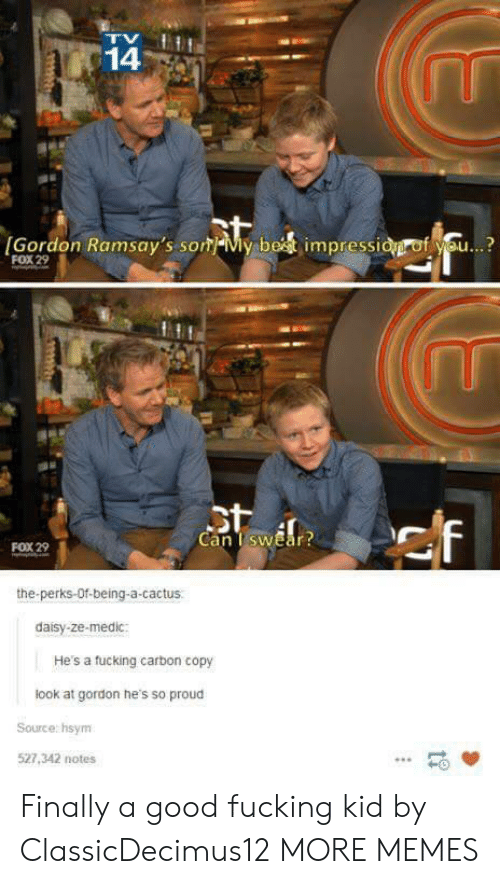 Medic: 14  [Gordon Ramsay's som-My be  impressi  f se..?  FOX 29  Can TswEar  FOX 29  the-perks-Of-being-a-cactus  daisy-ze-medic:  He's a tucking carbon copy  look at gordon he's so proud  Source: hsym  527,342 notes  -0 Finally a good fucking kid by ClassicDecimus12 MORE MEMES