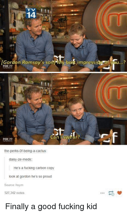 Medic: 14  Gordon Ramsay's sonMy best impressidgrof you...?  FOX 29  Can TswEar  FOX 29  the-perks-Of-being-a-cactus.  daisy-ze-medic  He's a fucking carbon copy  look at gordon he's so proud  Source hsynm  527,342 notes  HO Finally a good fucking kid