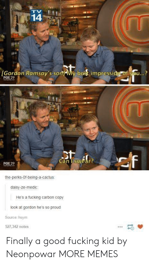 Medic: 14  Gordon Ramsay's sonMy best impressidgrof you...?  FOX 29  Can TswEar  FOX 29  the-perks-Of-being-a-cactus.  daisy-ze-medic  He's a fucking carbon copy  look at gordon he's so proud  Source hsynm  527,342 notes  HO Finally a good fucking kid by Neonpowar MORE MEMES