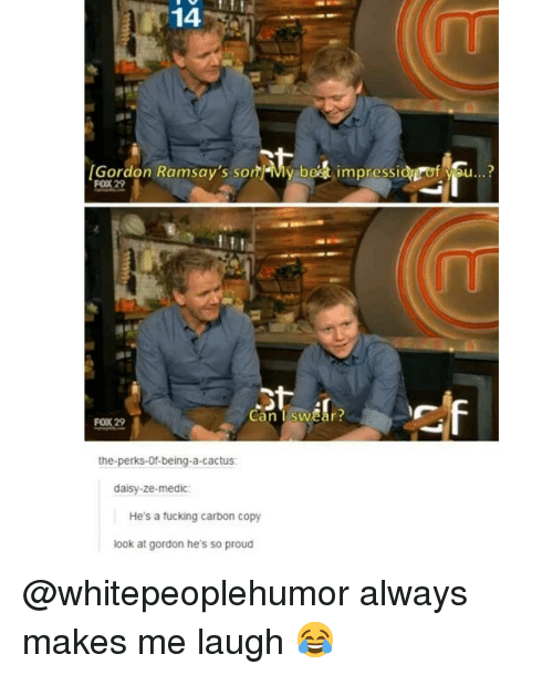 Medic: 14  Gordon Ramsay's sonMy best impressionof vau...?  FOX 29  Can I swear?  FOX 29  the-perks-Of-being-a-cactus  daisy-ze-medic:  He's a fucking carbon copy  look at gordon he's so proud @whitepeoplehumor always makes me laugh 😂