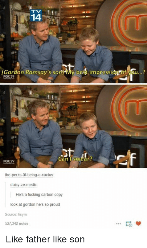Medic: 14  Gordon Ramsay's sonMy bet impressid of you..?  FOX 29  Can Tswear  FOX 29  the-perks-0f-being-a-cactus  daisy-ze-medic  He's a fucking carbon copy  look at gordon he's so proud  Source: hsym  527,342 notes  HO Like father like son