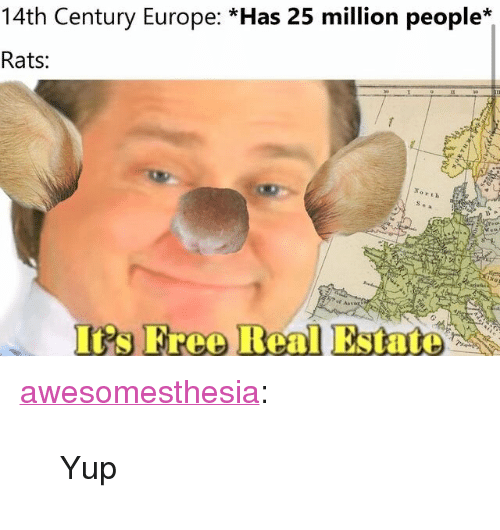 """Irs, Tumblr, and Blog: 14th Century Europe: *Has 25 million people*  Rats:  No rth  IRs Free Real Estate <p><a href=""""http://awesomesthesia.tumblr.com/post/173420482039/yup"""" class=""""tumblr_blog"""">awesomesthesia</a>:</p>  <blockquote><p>Yup</p></blockquote>"""