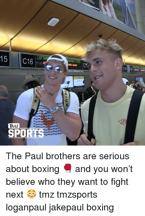 Boxing, Memes, and Sports: 15 C16  C19  TMZ  SPORTS The Paul brothers are serious about boxing 🥊 and you won't believe who they want to fight next 😳 tmz tmzsports loganpaul jakepaul boxing
