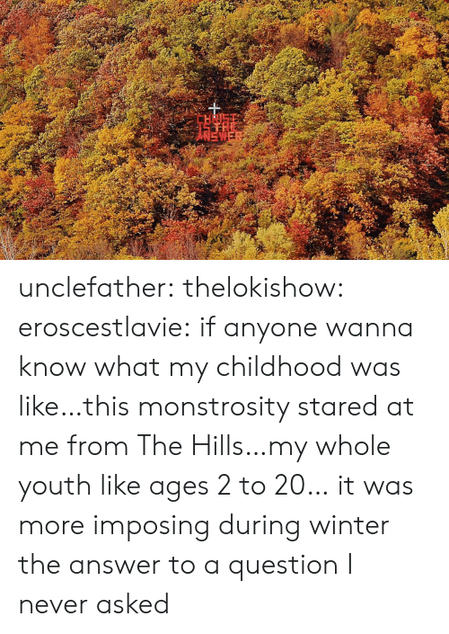 Tumblr, Winter, and Blog: 15 THE  ANEWER unclefather: thelokishow:  eroscestlavie:  if anyone wanna know what my childhood was like…this monstrosity stared at me from The Hills…my whole youth like ages 2 to 20…   it was more imposing during winter    the answer to a question I never asked
