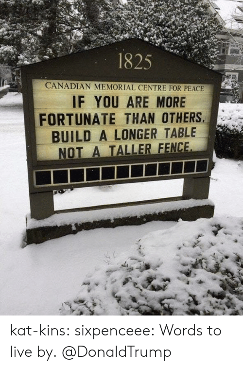 Target, Tumblr, and Blog: 1825  CANADIAN MEMORIAL CENTRE FOR PEACE  IF YOU ARE MORE  FORTUNATE THAN OTHERS  BUILD A LONGER TABLE  NOT A TALLER FENCE kat-kins:  sixpenceee: Words to live by.  @DonaldTrump