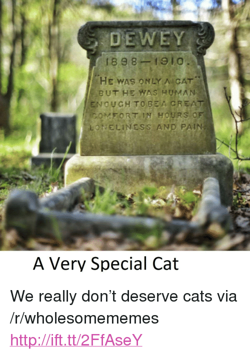 """creat: 1898-1910  HE WAS ONLY A CAT  BUT HE WAS HUMA)N  ENOUGH TO BEA CREAT  ONELINESS AND PAIN  FORT IN  HOURS O  A Very Special Cat <p>We really don&rsquo;t deserve cats via /r/wholesomememes <a href=""""http://ift.tt/2FfAseY"""">http://ift.tt/2FfAseY</a></p>"""