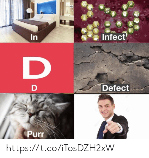 Memes, 🤖, and Purr: 19  14  IT  Infect  50  D  Defect  D  Purr  In https://t.co/iTosDZH2xW