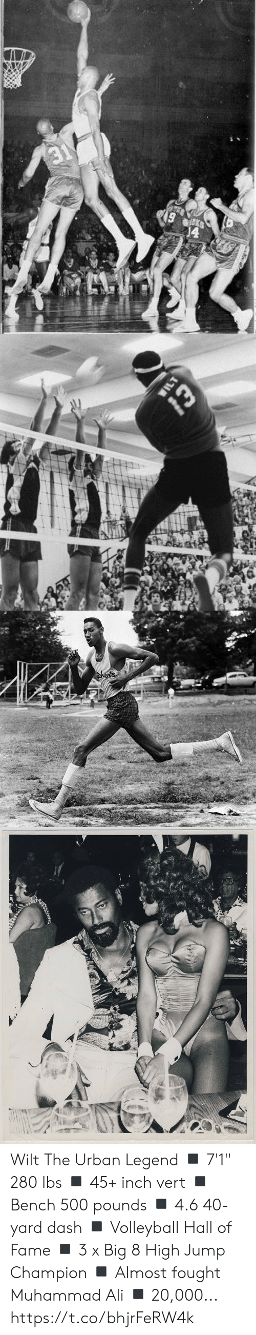 "4 6: 19   WILT  Whe   then's Wilt The Urban Legend  ◾️ 7'1"" 280 lbs ◾️ 45+ inch vert ◾️ Bench 500 pounds ◾️ 4.6 40-yard dash ◾️ Volleyball Hall of Fame ◾️ 3 x Big 8 High Jump Champion ◾️ Almost fought Muhammad Ali ◾️ 20,000... https://t.co/bhjrFeRW4k"