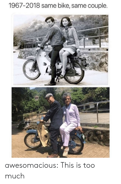 This Is Too Much: 1967-2018 same bike, same couple. awesomacious:  This is too much