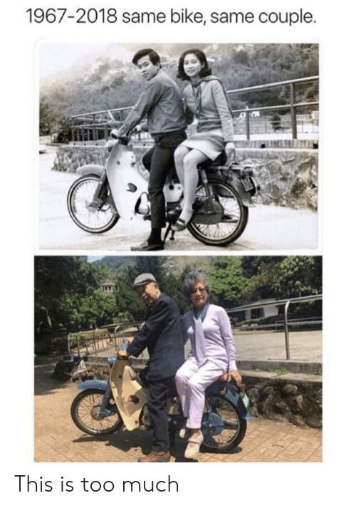 This Is Too Much: 1967-2018 same bike, same couple. This is too much