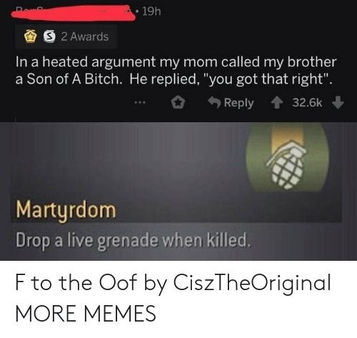 "oof: 19h  S 2 Awards  In a heated argument my mom called my brother  a Son of A Bitch. He replied, ""you got that right"".  Reply  32.6k  Martyrdom  Drop a live grenade when killed. F to the Oof by CiszTheOriginal MORE MEMES"