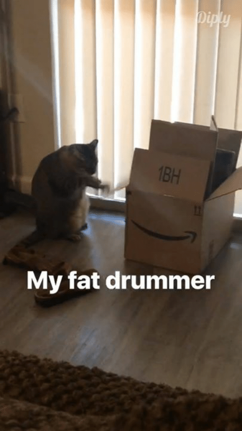 Memes, Fat, and 🤖: 1BH  My fat drummer
