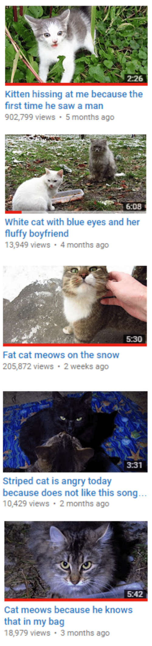 Saw, Blue, and Snow: 2:26  Kitten hissing at me because the  first time he saw a man  902,799 views 5months ago   6:08  White cat with blue eyes and her  fluffy boyfriend  13,949 views 4 months ago   5:30  Fat cat meows on the snow  205,872 views 2 weeks ago   3:31  Striped cat is angry today  because does not like this song  10,429 views 2 months ago   5:42  Cat meows because he knows  that in my bag  18,979 views 3 months ago