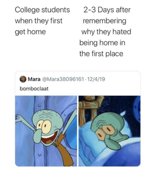 First Place: 2-3 Days after  remembering  College students  when they first  why they hated  get home  being home in  the first place  Mara @Mara38096161· 12/4/19  bomboclaat