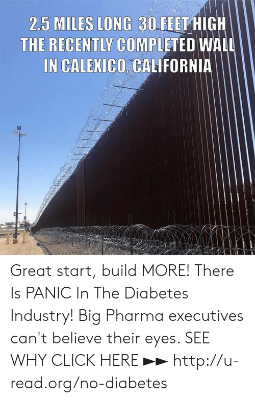 big pharma: 2.5 MILES LONG 30FEET HIGH  THE RECENTLY COMPLETED WALL  IN CALEXICO, CALIFORNIA Great start, build MORE!  There Is PANIC In The Diabetes Industry! Big Pharma executives can't believe their eyes. SEE WHY CLICK HERE ►► http://u-read.org/no-diabetes
