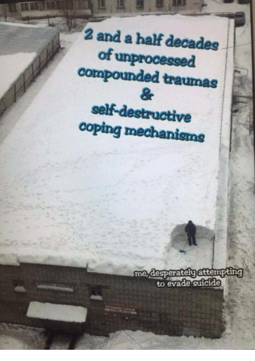 2 And A Half: 2 and a half decades  of unprocessed  compounded traumas  self-destructive  coping mechanisms  me desperatelyattempting  to evade suicide