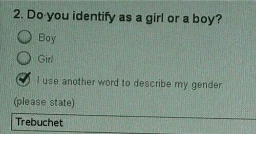 Girls, Memes, and Girl: 2. Do you identify as a girl or a boy?  O Boy  Girl  I use another word to describe my gender  (please state)  Trebuchet