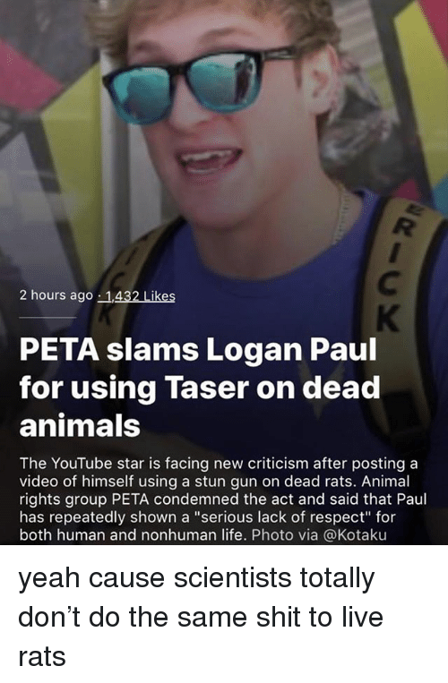 """Animals, Life, and Memes: 2 hours ago 1,432 Likes  PETA slams Logan Paul  for using Taser on dead  animals  The YouTube star is facing new criticism after posting a  video of himself using a stun gun on dead rats. Animal  rights group PETA condemned the act and said that Paul  has repeatedly shown a """"serious lack of respect for  both human and nonhuman life. Photo via @Kotaku yeah cause scientists totally don't do the same shit to live rats"""