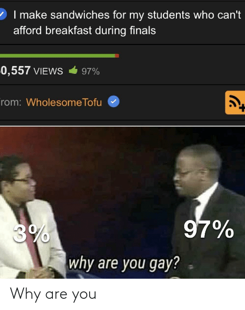 Finals, Breakfast, and Dank Memes: 2 I make sandwiches for my students who can't  afford breakfast during finals  0,557 VIEWS  97%  rom: WholesomeTofu  97%  3%  why are you gay? Why are you