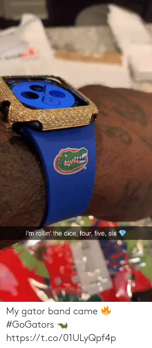 Band: 2  I'm rollin' the dice, four, five, six My gator band came 🔥 #GoGators 🐊 https://t.co/01ULyQpf4p
