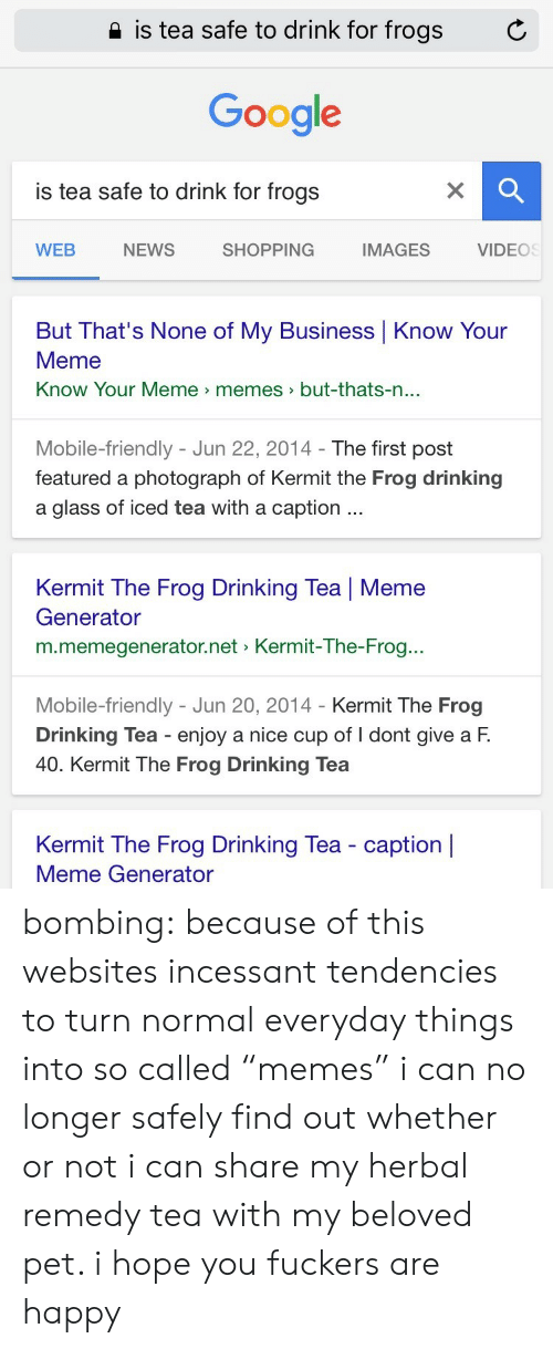 """know your meme: 2 is tea safe to drink for frogs  C  Google  is tea safe to drink for frogs  WEB  NEWS  SHOPPING  IMAGES  VIDEOS  But That's None of My Business Know Your  Meme  Know Your Meme memes>but-thats-n  ...  Mobile-friendly - Jun 22, 2014- The first post  featured a photograph of Kermit the Frog drinking  a glass of iced tea with a caption  Kermit The Frog Drinking Tea   Meme  Generator  m.memegenerator.net Kermit-The-Frog..  Mobile-friendly - Jun 20, 2014 - Kermit The Frog  Drinking Tea enjoy a nice cup of I dont give a F.  40. Kermit The Frog Drinking Tea  Kermit The Frog Drinking Tea - caption    Meme Generator bombing:  because of this websites incessant tendencies to turn normal everyday things into so called """"memes"""" i can no longer safely find out whether or not i can share my herbal remedy tea with my beloved pet. i hope you fuckers are happy"""