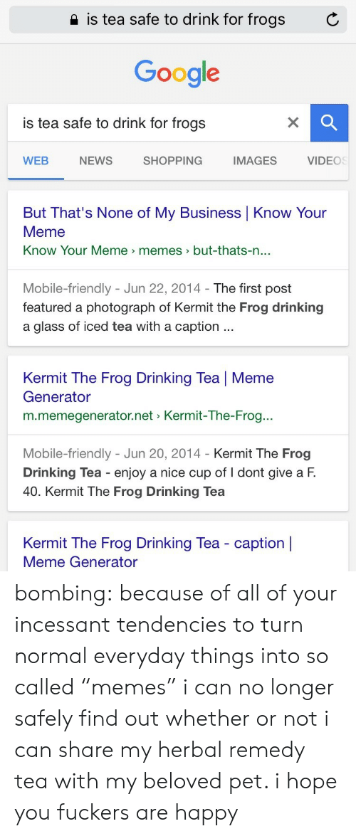 """know your meme: 2 is tea safe to drink for frogs  C  Google  is tea safe to drink for frogs  WEB  NEWS  SHOPPING  IMAGES  VIDEOS  But That's None of My Business Know Your  Meme  Know Your Meme memes>but-thats-n  ...  Mobile-friendly - Jun 22, 2014- The first post  featured a photograph of Kermit the Frog drinking  a glass of iced tea with a caption  Kermit The Frog Drinking Tea   Meme  Generator  m.memegenerator.net Kermit-The-Frog..  Mobile-friendly - Jun 20, 2014 - Kermit The Frog  Drinking Tea enjoy a nice cup of I dont give a F.  40. Kermit The Frog Drinking Tea  Kermit The Frog Drinking Tea - caption    Meme Generator bombing:  because of all of your incessant tendencies to turn normal everyday things into so called """"memes"""" i can no longer safely find out whether or not i can share my herbal remedy tea with my beloved pet. i hope you fuckers are happy"""