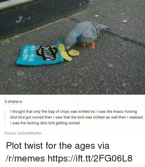 Fucking, Memes, and Saw: 2-shane-s:  I thought that only the bag of chips was knitted so I was like Imaoo fucking  idiot bird got owned then I saw that the bird was knitted as well then I realized  I was the fucking idiot bird getting owned  Source: birdsofafeathe... Plot twist for the ages via /r/memes https://ift.tt/2FG06L8