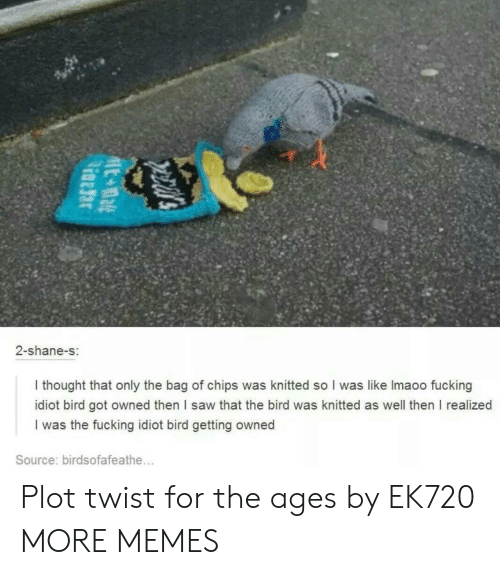 Dank, Fucking, and Memes: 2-shane-s:  I thought that only the bag of chips was knitted so I was like Imaoo fucking  idiot bird got owned then I saw that the bird was knitted as well then I realized  I was the fucking idiot bird getting owned  Source: birdsofafeathe... Plot twist for the ages by EK720 MORE MEMES