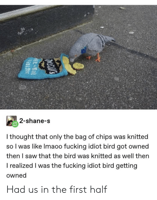 the bird: 2-shane-s  I thought that only the bag of chips was knitted  so I was like Imaoo fucking idiot bird got owned  then I saw that the bird was knitted as well then  I realized I was the fucking idiot bird getting  owned Had us in the first half