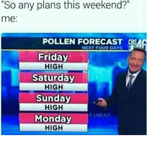 "pollen: 2  ""So any plans this weekend?""  me:  POLLEN FORECAST CBSA  NEXT FOUR DAYS  Friday  HIGH  Saturday  HIGH  Sunday  HIGH  Monday  HIGH  f LMFAO"