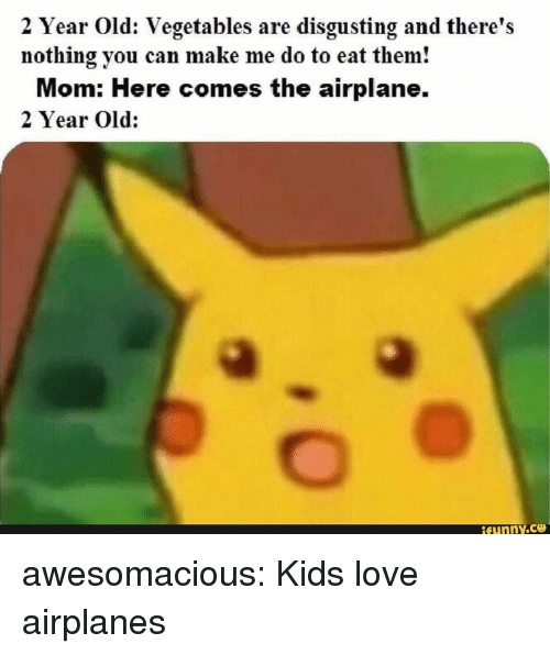 Love, Tumblr, and Airplane: 2 Year Old: Vegetables are disgusting and there's  nothing you can make me do to eat them!  Mom: Here comes the airplane.  2 Year Old: awesomacious:  Kids love airplanes
