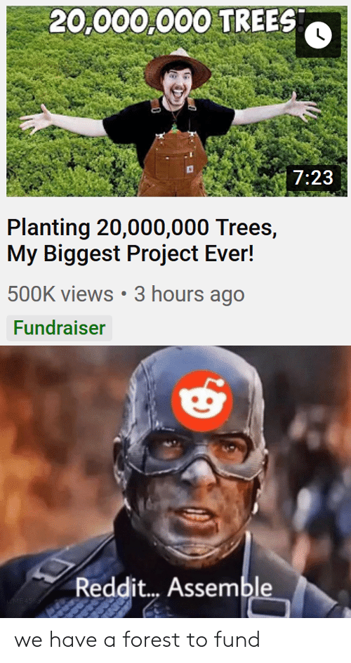 Fund: 20,000,000 TREES  7:23  Planting 20,000,000 Trees,  My Biggest Project Ever!  500K views 3 hours ago  Fundraiser  Reddit... Assemble  uME4SSS we have a forest to fund