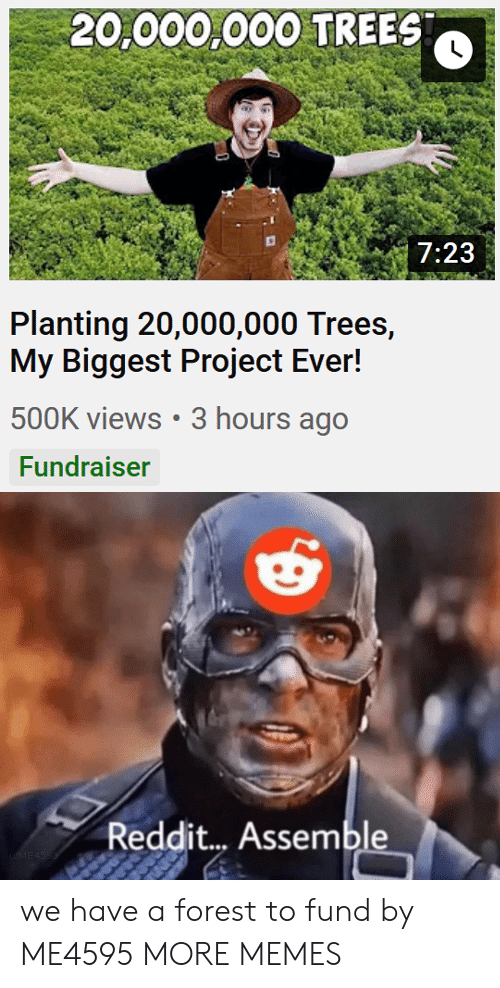 Fund: 20,000,000 TREES  7:23  Planting 20,000,000 Trees,  My Biggest Project Ever!  500K views 3 hours ago  Fundraiser  Reddit... Assemble  uME4SSS we have a forest to fund by ME4595 MORE MEMES