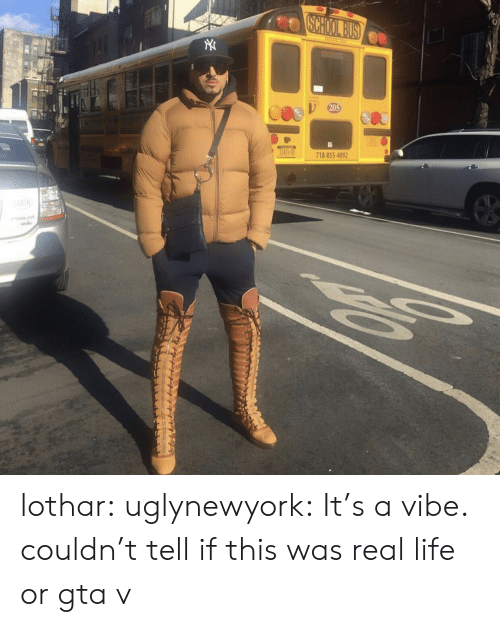 Gta V, Life, and Tumblr: 20  718-855-409 lothar: uglynewyork: It's a vibe. couldn't tell if this was real life or gta v
